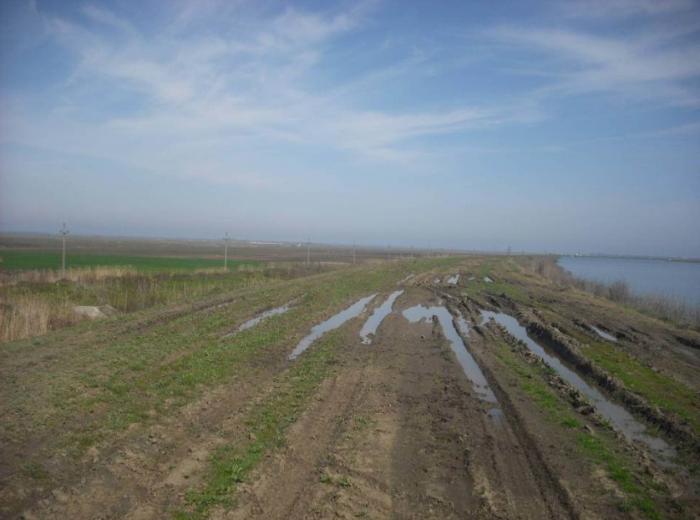 În judeţul Călăraşi, peste 2300 de hectare de teren agricol  au fost inundate
