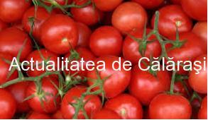 O familie din Călărași cultivă 17 soiuri de roșii