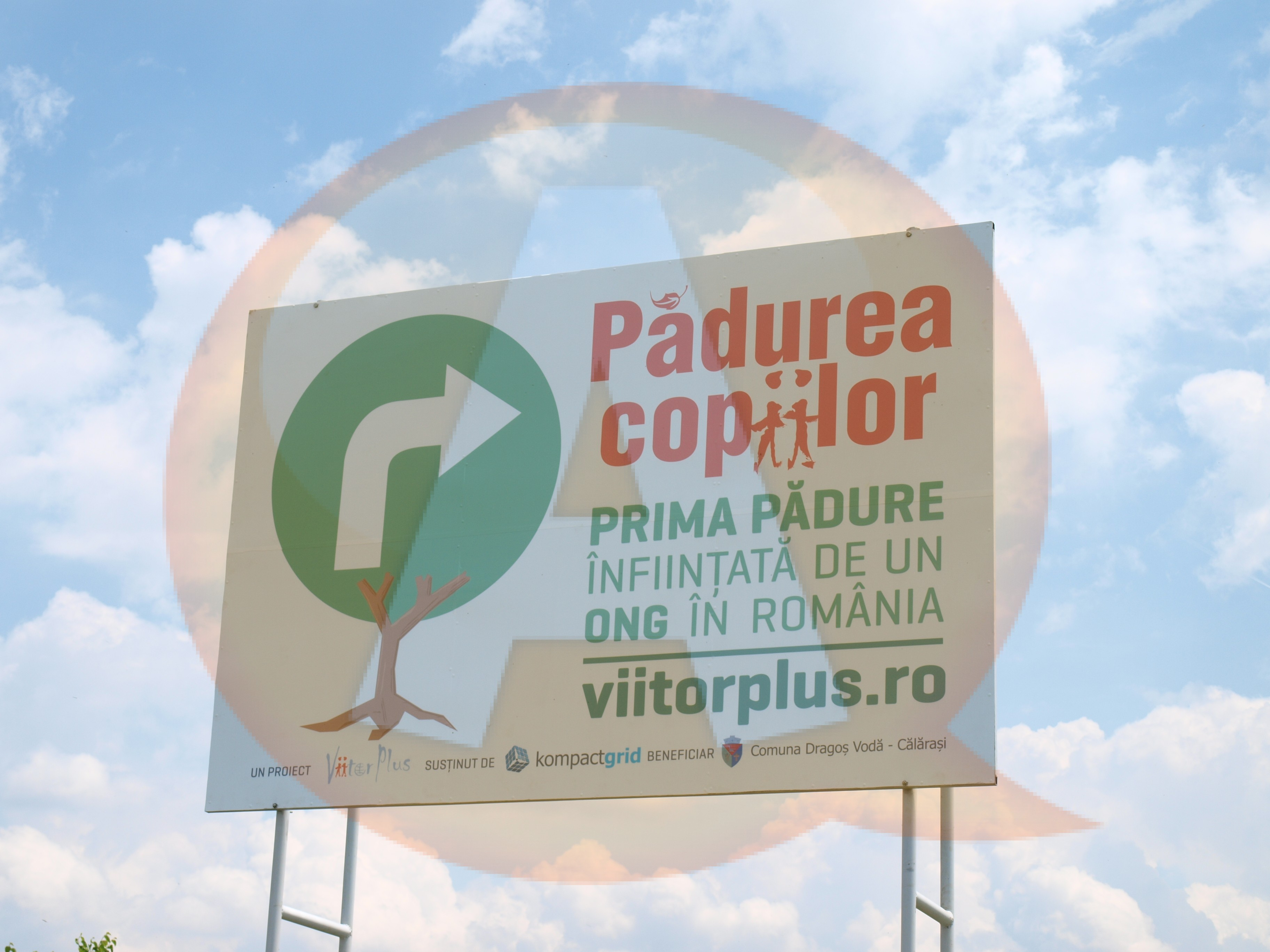 O premieră în mediul ONG din România: Asociația ViitorPlus a inaugurat o pădure