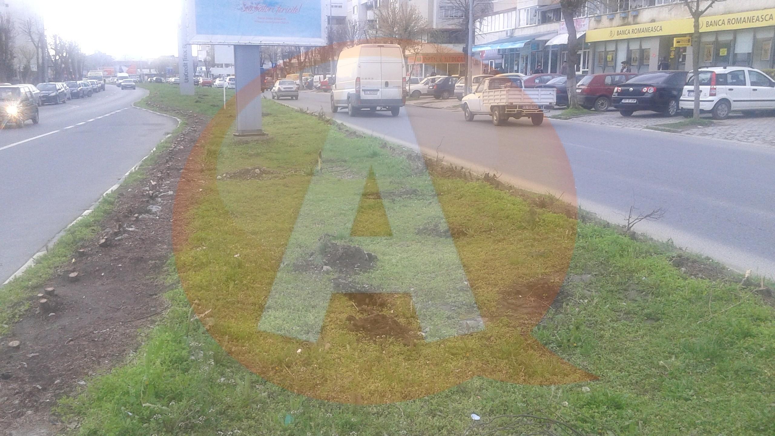 Ce se întâmplă cu spațiul verde de pe strada București?