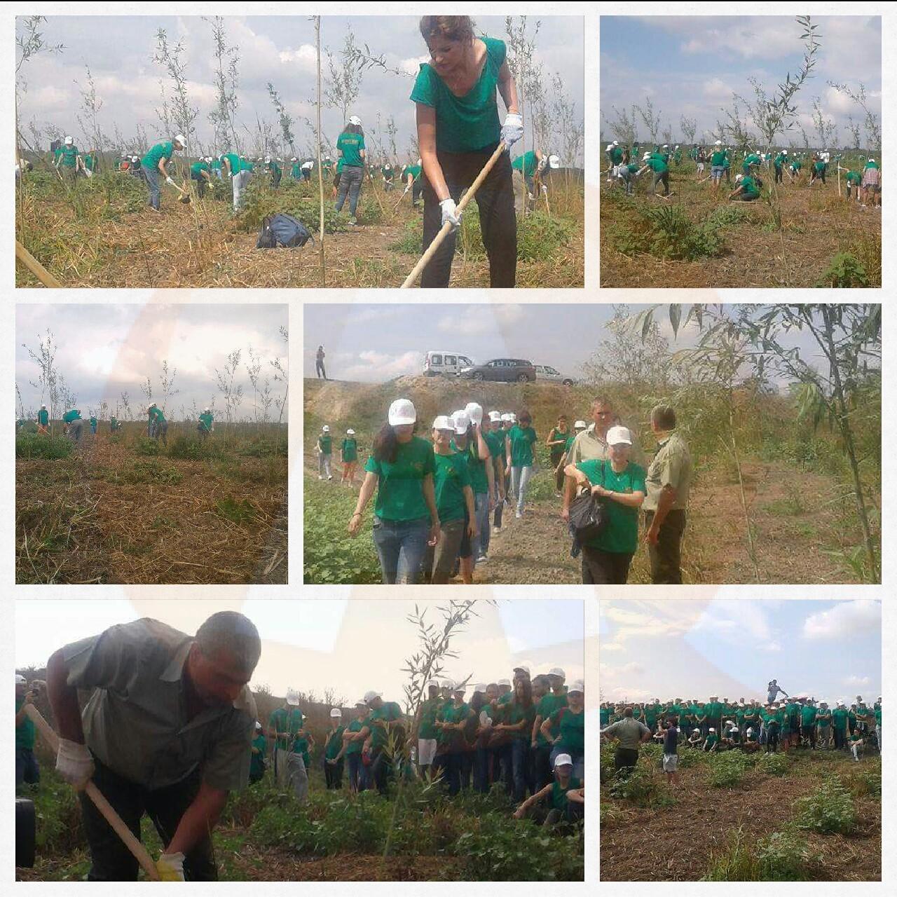 Sâmbătă, 19 noiembrie, 4.000 de voluntari vor planta fapte bune