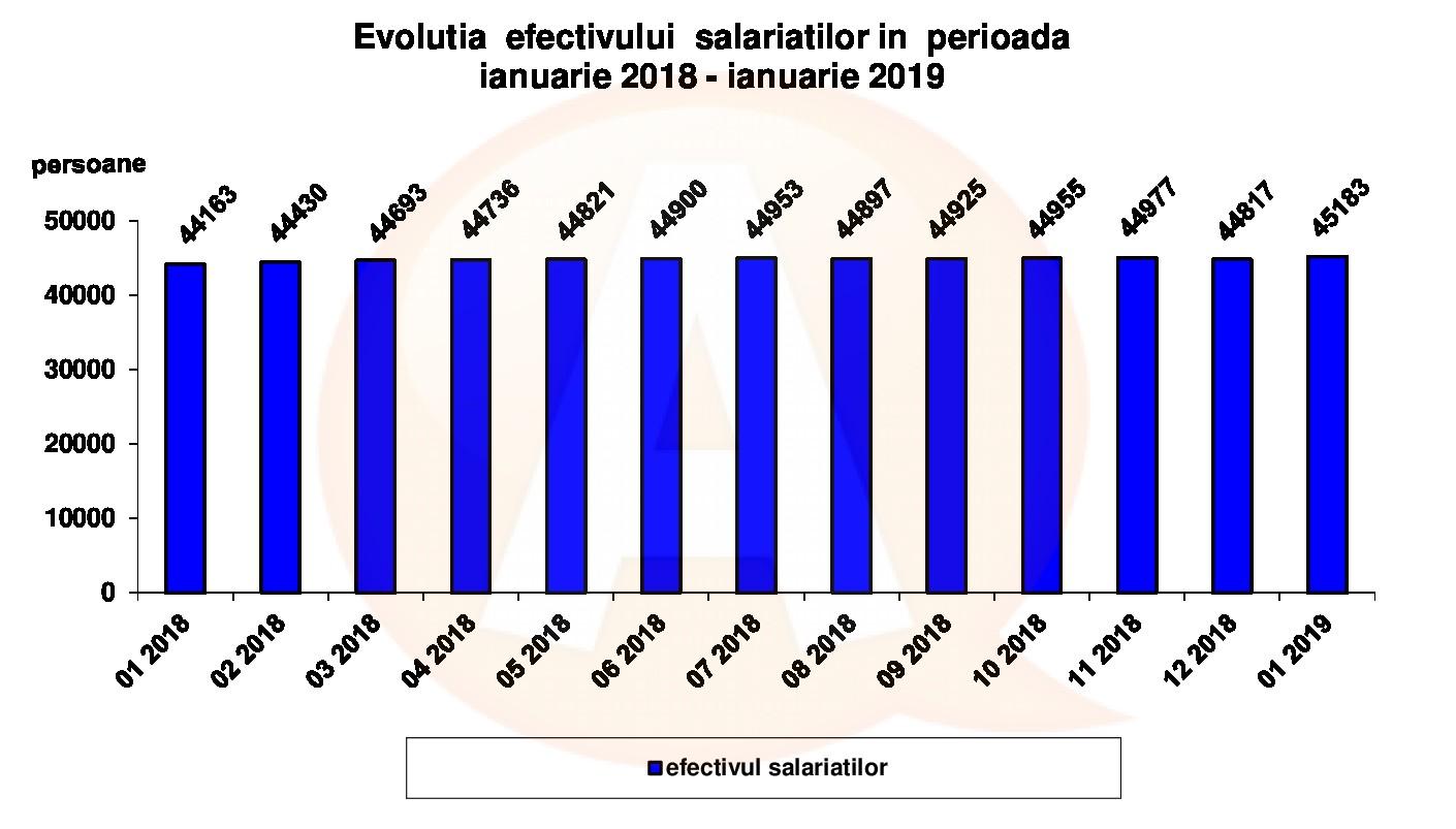 În luna ianuarie, a crescut numărul salariaților, din județul Călărași